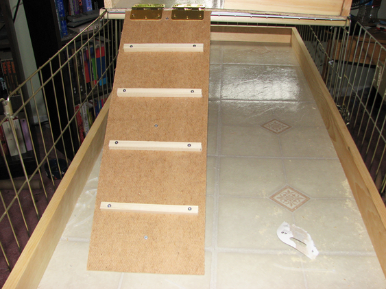 Building Your Own Bunny Condo – A Step